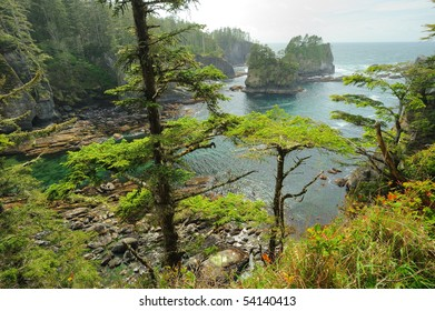 beautiful seascape in cape flattery of olympic national park, washington, usa