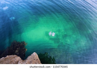A beautiful seascape, a jellyfish floats in the water at a depth of. Nature reserve at Cape Tarkhankut in the Crimea, the Black Sea