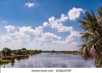 Beautiful seascape St Marks Park Florida,National wild refuge.
