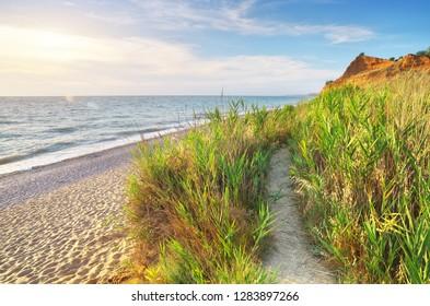 Beautiful seascape. Sunny sand beach. Composition of nature.