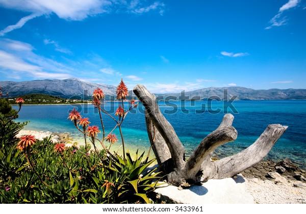 Beautiful seascape taken of the coast of the island Korcula, Croatia