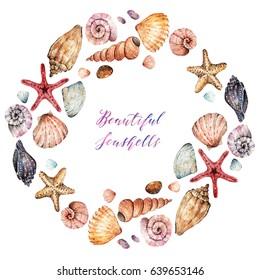 Beautiful seashells, Watercolor illustration, set. background, handmade, wreath, postcard for you