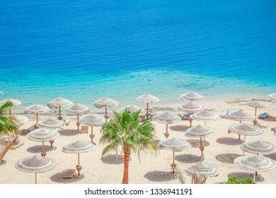Beautiful seashore vacation on nature landscape background