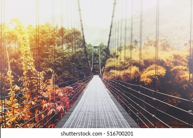 Beautiful season change forest and sunlight, with steel suspension bridge at foggy day in the morning, vintage tone