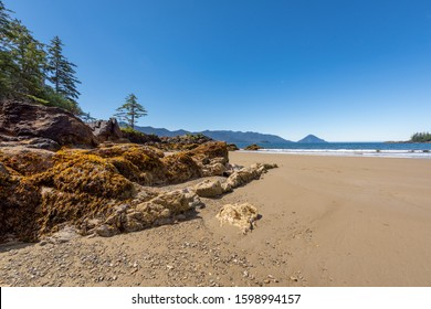 Beautiful secluded and remote sandy Bonanza Beach of Rennell Sound on the west coast of Graham Island of Haida Gwaii, British Columbia, Canada.  Formerly called the Queen Charlotte Islands.