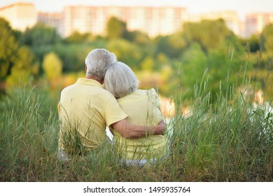 beautiful senior couple hugging in the park, back view