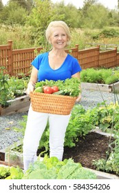 Beautiful senior lady in the garden holding a wicker basket filled with freshly picked organic fruits and vegetables.