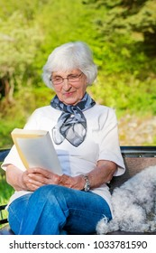 Beautiful Senior Woman Reading a Book with her Dog in a Summer Garden