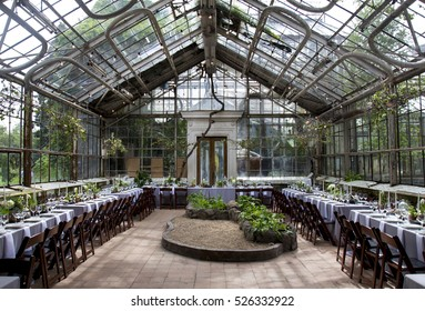 Beautiful served wedding table with decor as candles, flower arrangements and bird nests in the greenhouse. Banquet dinner party