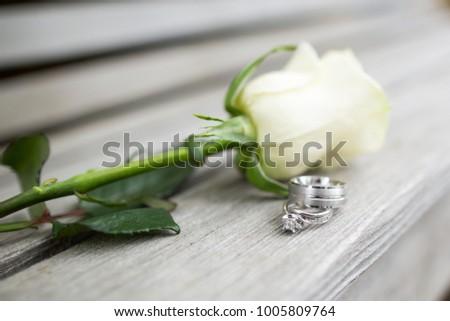 white rose idaho