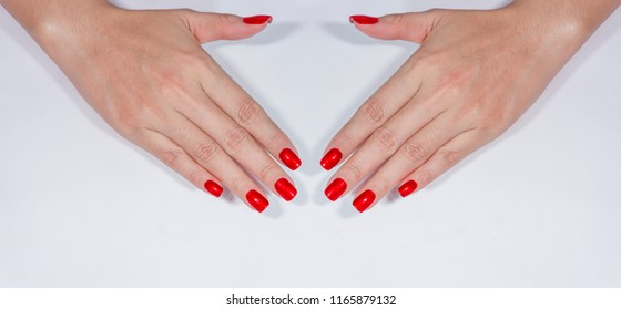 beautiful sexy attractive shimmer dark silky red color gel nail art on fashionista elegance young woman fingernails isolated on white background
