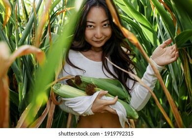 Beautiful sexy young asian woman with tanned skin in a corn field