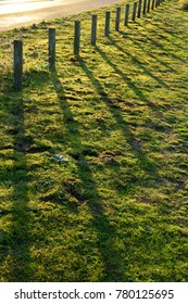 Beautiful shadows on a grass path