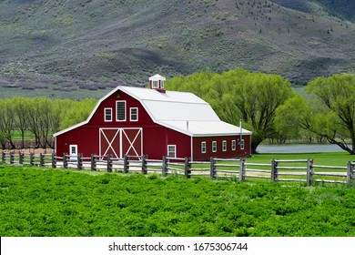 A beautiful shot of the red wooden barnyard in the field