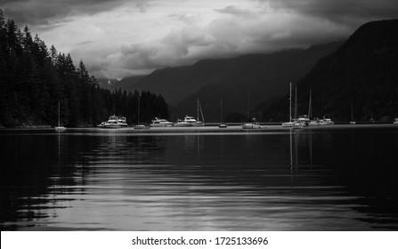 Beautiful shot taken in the harbor of Vancouver B.C