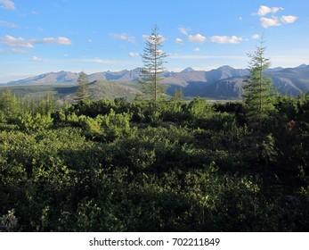Beautiful Siberia in Russia. Very beautiful