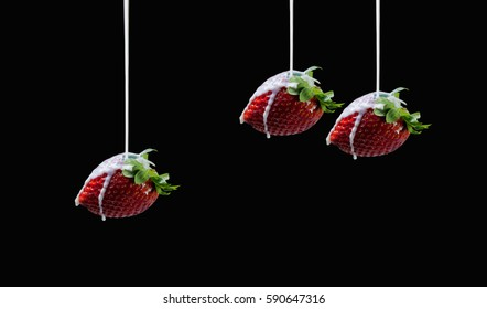 Beautiful side view of milk stream flowing to three delicious and tasty strawberries on dark background