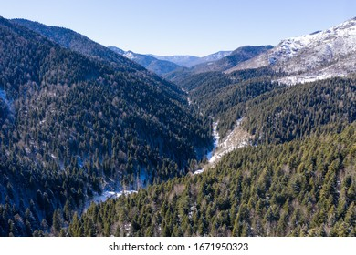 Beautiful sight at a snow covered forest from the top taken with a drone