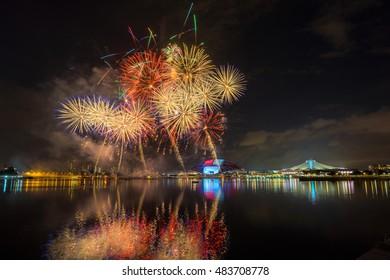 Beautiful Singapore national day fireworks at national stadium