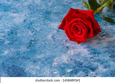 A beautiful single blooming red rose on blue and white acrylic background.