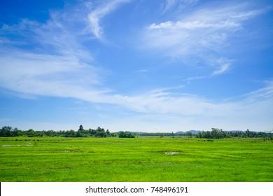 Beautiful sky with vast pastures.