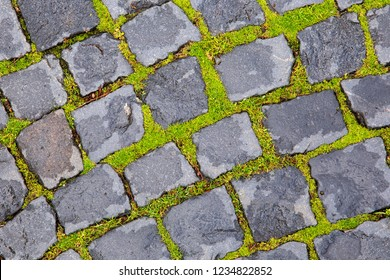 Beautiful small ancient stones with moss or small grass growing between them outdoors. Paving stone top view.