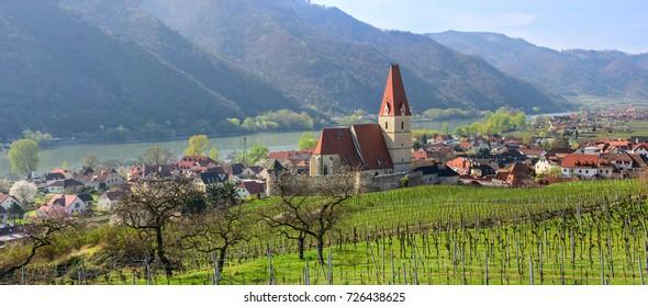 Beautiful small village of Weissenkirchen-in-der-Wachau with vineyards in the foreground. Wachau-valley, district of Krems-Land, Lower Austria.