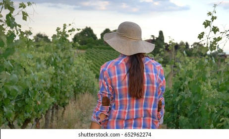 Beautiful smiling girl (woman) farmer watching over grape fields, in a straw hat and in a shirt, greens background. Concept ecology, wine, bio product, inspection, water, natural products, agriculture