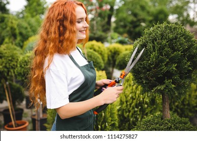 Beautiful smiling lady with redhead curly hair standing in apron and holding big garden scissors while working outdoors