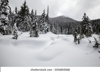 Beautiful snow covered Canadian Mountain Landscape during a cloudy day. Taken on Cypress Mountain, Vancouver, British Columbia, Canada.