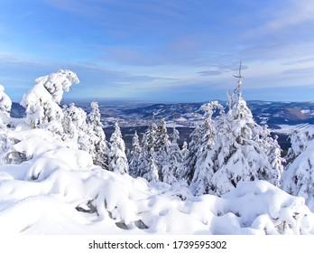 Hermoso bosque cubierto de nieve en Ramzova, República Checa