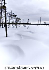 Hermosas formaciones de dunas de nieve en la selva de invierno finlandesa