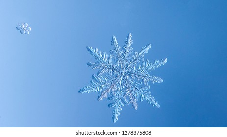 Beautiful snow flake on a light blue background close up