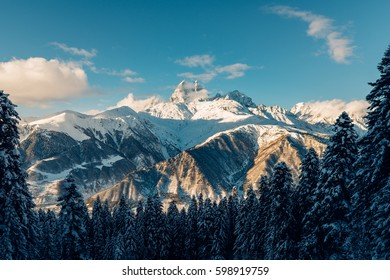 Beautiful snow mountains view with green high pine forest and clouds in the blue sky