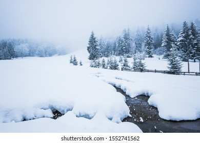Beautiful snow panorama of a snowdrift and a thin strip of river pass by the wall of a dense coniferous snow-covered forest on a cloudy winter frosty day. Harsh Winter Weather Concept
