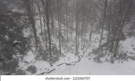 Beautiful snow view in Kartepe/Kocaeli TURKEY