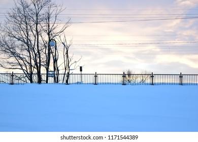 Beautiful Snow in Winter Landscape View
