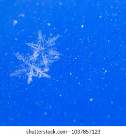 Beautiful snowflake, a single ice crystal in a sufficient size, falls through the Earth's atmosphere as snow. Often in shining hexagonal crystals shape. By macro lenses with shallow depth of field.