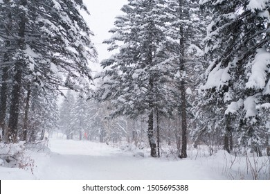 Beautiful snowscape in the valley
