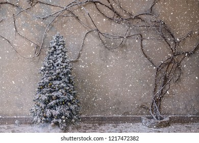 Beautiful snowy christmas tree in the holiday interior. Empty space for text.Winter christmas background.