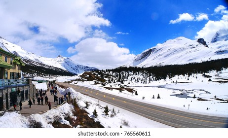 Beautiful snowy of Columbia Icefield in the Rocky Mountain, the border of British Columbia and Alberta, Canada