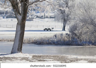 A beautiful snowy landscape scene for print or backdrop.