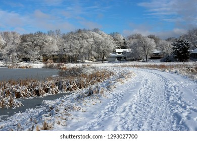 Beautiful snowy winter nature background. Scenic rural landscape with blue sky over the covered by fresh snow trees, houses and frozen pond. Midwest USA, Wisconsin, Madison area.