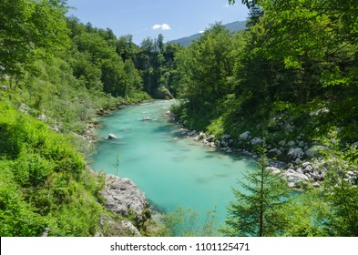 Beautiful Soca river with turquoise water and green forest, Slovenia