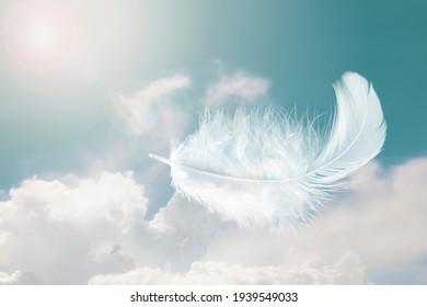 Beautiful Soft and Light Fluffy White Feathers Floating inThe Sky with Clouds. Abstract. Heavenly Dreamy Fluffy Colorful Sky.