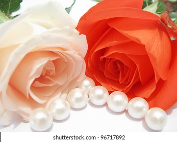 Beautiful soft roses and white pearls isolated on white background-beauty concept