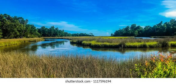 Beautiful South Mississippi Bayou shot, with a pretty semi-clear Blue Sky