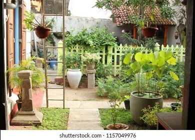 beautiful southern garden with flowerpots