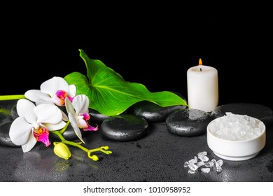 beautiful spa background of white orchid flower, phalaenopsis, green leaf with dew, sea salt and candle on black zen stones, close up