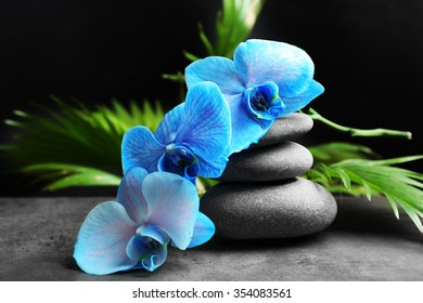 Beautiful spa composition with blue orchid and stones